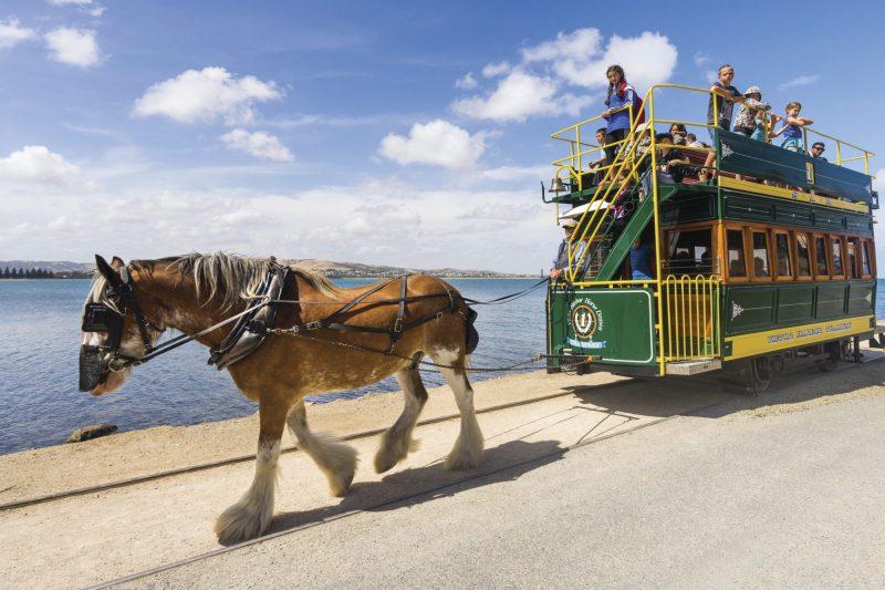 Horse Drawn Tram to Granite Island
